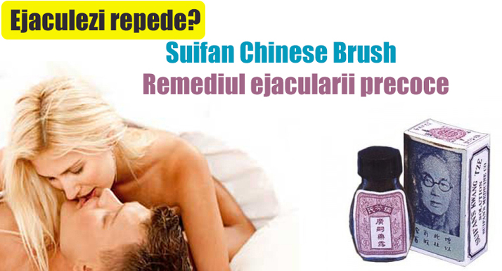 suifan chinese brush original